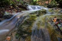 Autunno-Parco Regionale delle Alpi Apuane foto 2