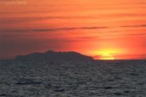 L'isola Gorgona vista da Livorno
