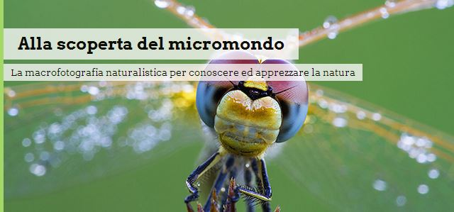 Alla scoperta del micromondo